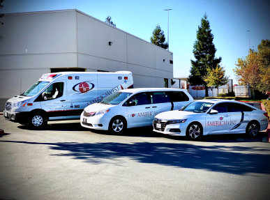 different types of emergency ambulance